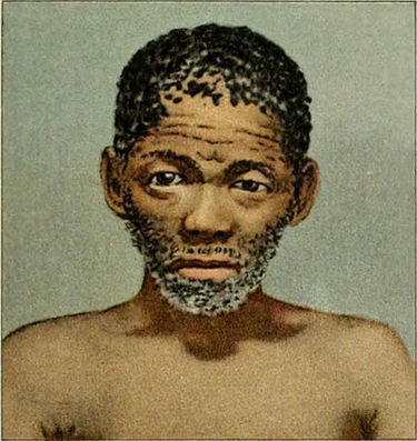 NIE 1905 Africa - Bushman Type South Africa.jpg