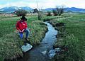 NRCSMT01091 - Montana (5029)(NRCS Photo Gallery).jpg