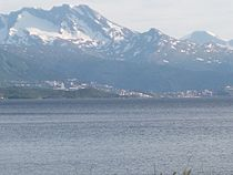 Narvik seen from Bjerkvik.JPG