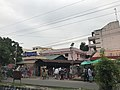National Institute of Homeopathy, Kolkata 02.jpg