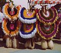 Native American fancy dance regalia.jpg