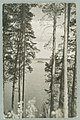 Nervanderin kumpu, Laukanlahti, Nuotsaari, Laukansaari, Th. Sunell 1920s–1930s PK0151.jpg