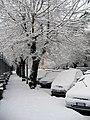 Neve a Roma 04-02-2012 - panoramio (4).jpg