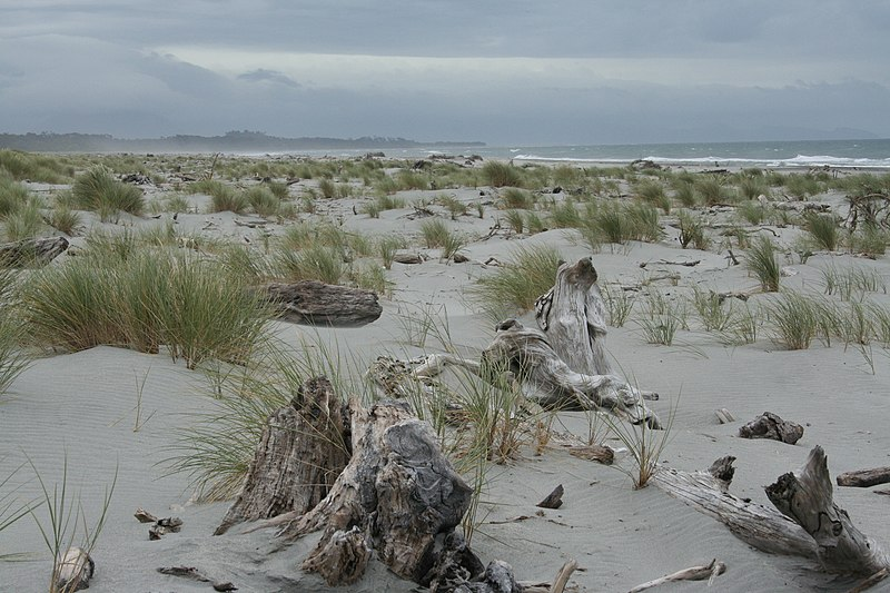 Haast New Zealand  city pictures gallery : New Zealand Beach of Haast Wikipedia, the free encyclopedia