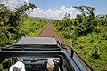 Ngorongoro Conservation Area road.jpg