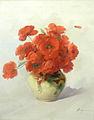 Nicolae Angelescu - Flori de mac.jpg