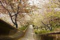 Nishi-Hirahatake park, Odawara.jpg