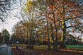 Nonsuch Park in Surrey 6 December 2014.jpg