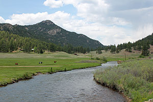 North Fork South Platte River - The river as it passes by Buffalo Creek in Jefferson County.