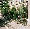 Old botanic garden - geograph.org.uk - 919603.jpg
