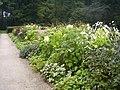 Oosterbeek-tuin-lage-oorsprong-02.JPG