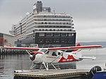 Oosterdam and VH-YKY Hobart Tasmania (8660582190).jpg