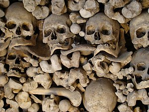 Wamba, Valladolid - Ossuary with skeletons from the 13th to 18th century