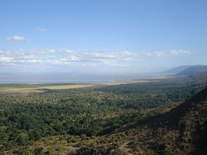 Lake Manyara - Overlook of Lake Manyara National Park