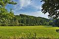 Přírodní památka Údolí Velké Hané, okres Prostějov.jpg