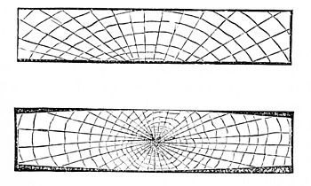 PSM V02 D606 Cross section of dried lumber 2.jpg