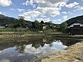 Paddy fields near Shimbashi Bridge 2.jpg