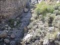 Paisajes y vistas de Castellar de Meca 04.jpg