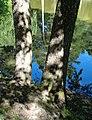 Palanga Botanical Park. Reflections and Shadows. 2018(1).jpg