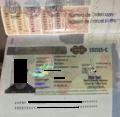 Paraguay Visa Edit.png