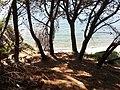 Parco del Cilento mare di Punta Licosa.jpg