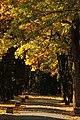 Parcul Mare (4109377889).jpg