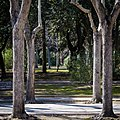 Park In Lecce (32247139).jpeg