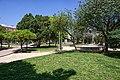 Parque Geologo Jose Royo - Castellon - Bosque.jpg