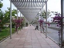 prgola metlica formada por piares cilndricos e cangos planos como teito as plantas rubideiras buganvleas anda novas co tempo han cubrir a - Pergola Metalica