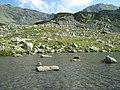 Pe lacul Zanoaga Stanei - panoramio.jpg