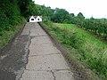 Peek-a-boo - geograph.org.uk - 534809.jpg
