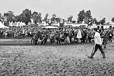 People of Wacken Open Air 2015 08.jpg