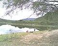Pescadero (al frente de Guanaquitos - Gratis) - Dique Cabra Corral - panoramio.jpg