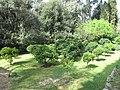 Petite orangeraie des Serres de la Madone.jpg