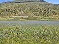 Pian Grande landscape Sibillini Mountains 06.jpg