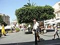 Piazza Vittorio Veneto - Tropea - panoramio.jpg