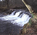 Pillaton mill weir on the river Lynher - geograph.org.uk - 915383.jpg