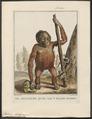 Pithecus satyrus - 1810-1819 - Print - Iconographia Zoologica - Special Collections University of Amsterdam - UBA01 IZ19800056.tif
