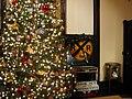 Plant Museum Christmas Tree.jpg