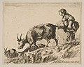 Plate 14- shepherdess herding goats MET DP817860.jpg