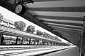 Platforms and tracks, Tanjong Pagar Railway Station, Singapore - 20100619-03.jpg