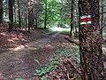 Po červenej značke - panoramio (2).jpg