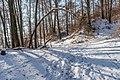 Poertschach Glorietteweg Waldwanderweg Mittelteil 21012017 6170.jpg