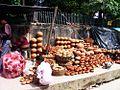 Potters Patna.JPG