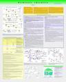 Prebitotic-chirality.pdf