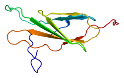Proteino EPHA1 PDB 1x5a.png