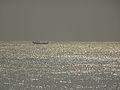 Puri Beach - Odisha.jpg