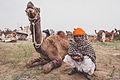 Pushkar, Rajasthan - India (16076851881).jpg