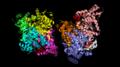Pyruvate dehydrogenase phosphorylation sites.png