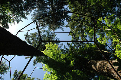A 30' (9 m) buckyball structure by Julian Voss-Andreae. View from below. Location: Private property in Portland, Oregon, USA